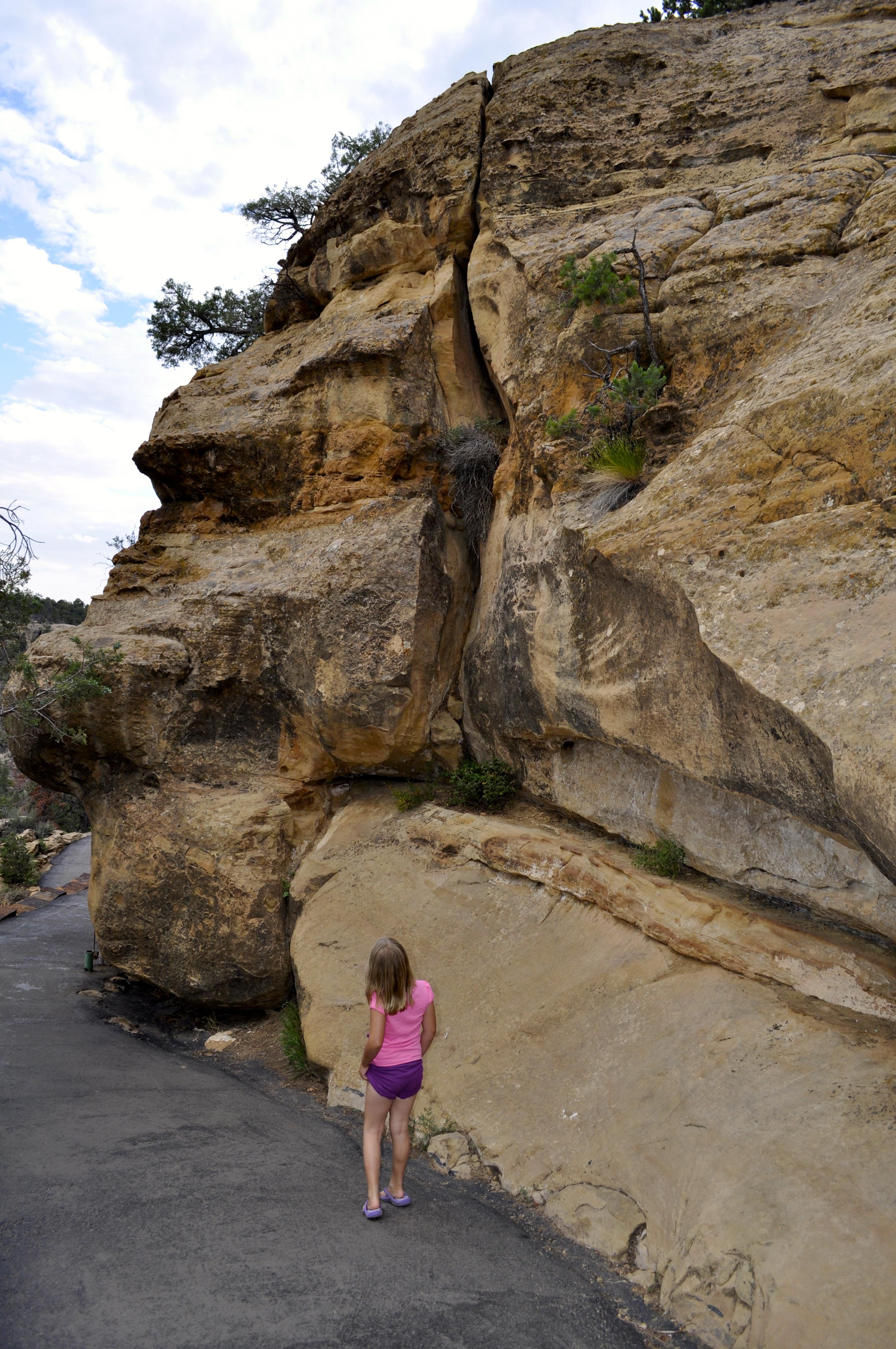Rocks in nature